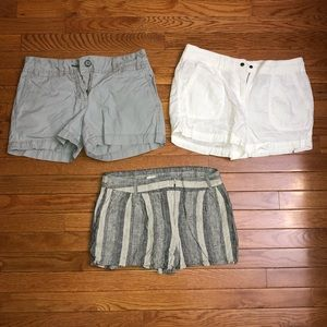 Loft Shorts BUNDLE!